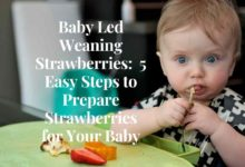 Photo of Baby Led Weaning Strawberries: 5 Easy Steps to Prepare Strawberries for Babies