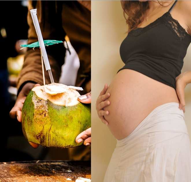 pregnant-coconut water
