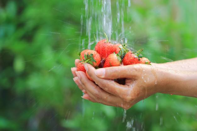 strawberries-washing