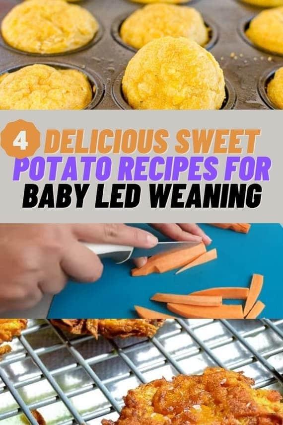 baby led weaning sweet potato