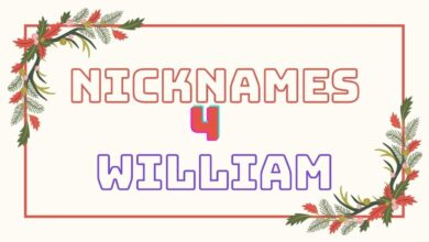 Photo of 65 Most Acceptable Nicknames for William
