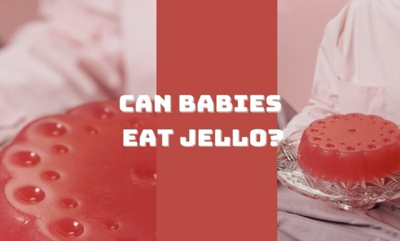 can babies eat Jello