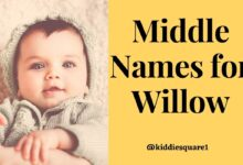 Photo of The Best 120 Middle Names for Willow